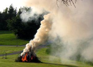 Soort rook bij openhaardhout